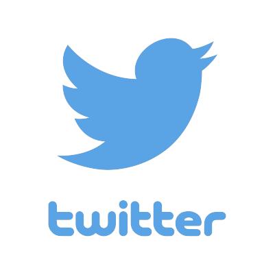 Logo Twitter - Perché le Presentazioni Animate sono Fondamentali per il Marketing